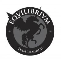 Logo Team Training Equilibrium